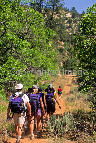 Hikers in Zion National Park, Utah - S11 - 81 - 72 ppi