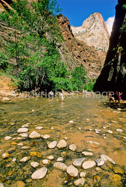 Hikers in Zion National Park, Utah - S11 - 146 - 72 ppi