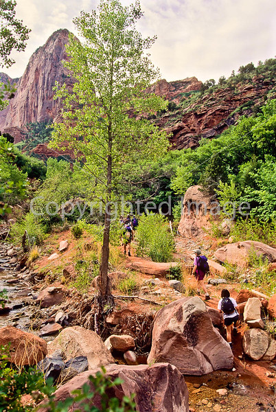 Hikers in Zion National Park, Utah - S11 - 323 - 72 ppi