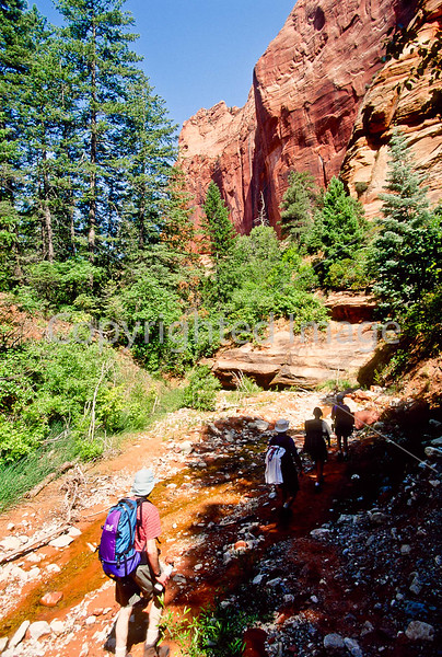 Hikers in Zion National Park, Utah - S11 - 101 - 72 ppi