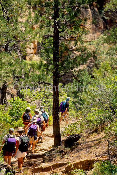 Hikers in Zion National Park, Utah - S11 - 168 - 72 ppi