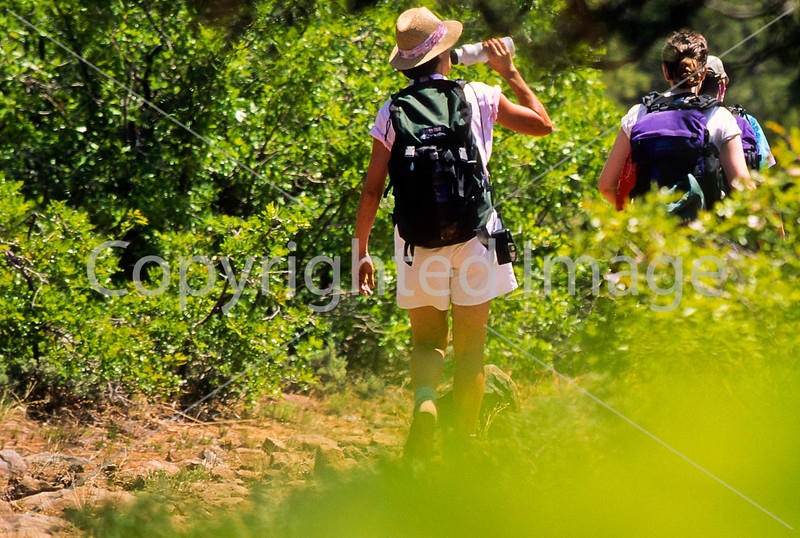 Hikers in Zion National Park, Utah - S11 - 18 - 72 ppi-2