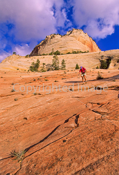 Hikers in Zion National Park, Utah - S11 - 73 - 72 ppi