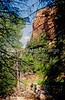 Hikers in Zion National Park, Utah - S11 - 317 - 72 ppi