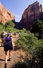 Hikers in Zion National Park, Utah - S11 - 338 - 72 ppi