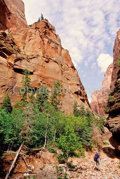 Hikers in Zion National Park, Utah - S11 - 171 - 72 ppi