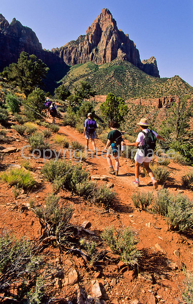 Hikers in Zion National Park, Utah - S11 - 49 - 72 ppi