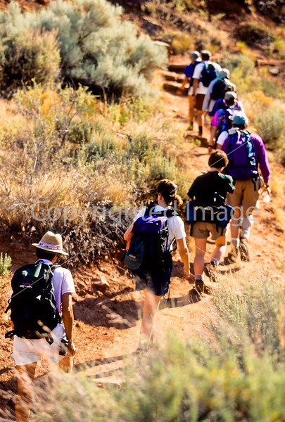 Hikers in Zion National Park, Utah - S11 - 137 - 72 ppi