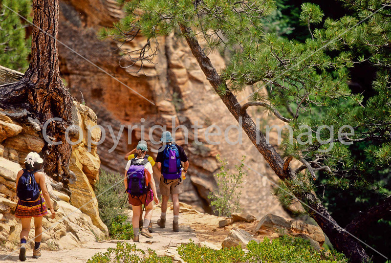 Hikers in Zion National Park, Utah - S11 - 183 - 72 ppi