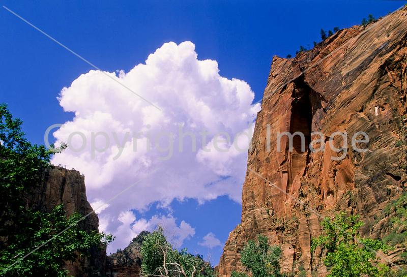 Zion National Park, Utah - 5 - 72 dpi