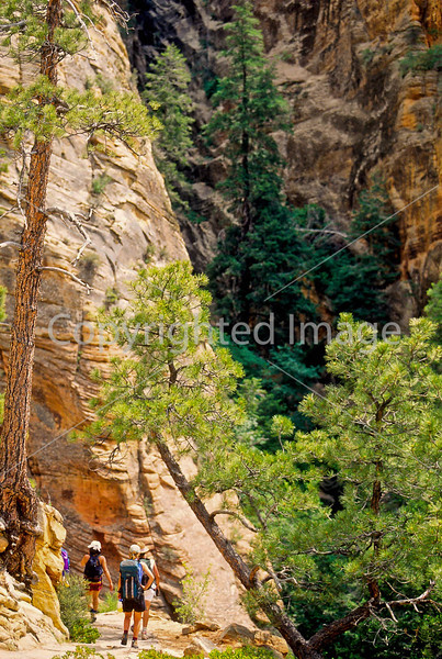 Hikers in Zion National Park, Utah - S11 - 264 - 72 ppi