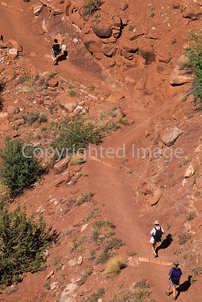 Hikers in Zion National Park, Utah - S11 - 343 - 72 ppi