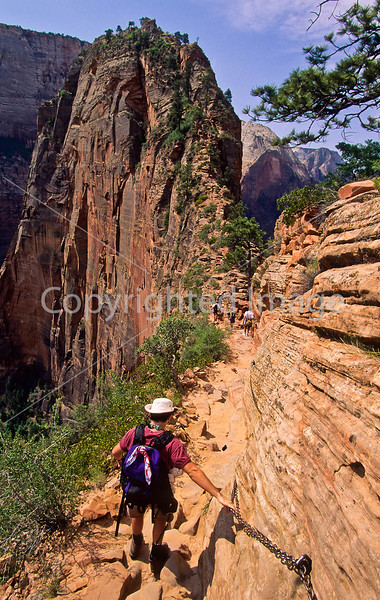 Hikers in Zion National Park, Utah - S11 - 85 - 72 ppi