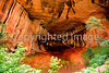 Zion National Park, Utah - 1 - 72 dpi