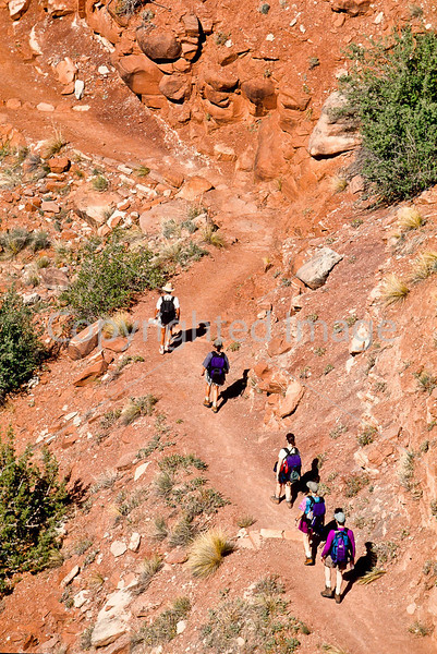 Hikers in Zion National Park, Utah - S11 - 164 - 72 ppi