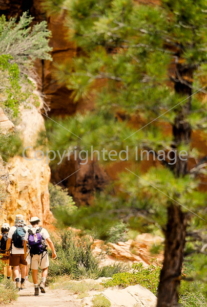 Hikers in Zion National Park, Utah - S11 - 177 - 72 ppi