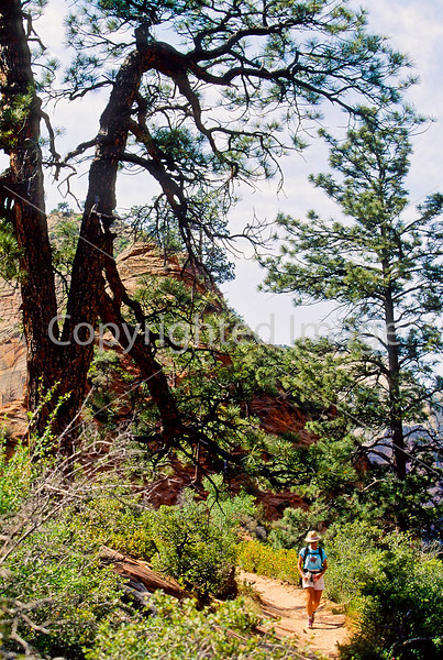 Hikers in Zion National Park, Utah - S11 - 216 - 72 ppi