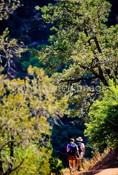 Hikers in Zion National Park, Utah - S11 - 310 - 72 ppi