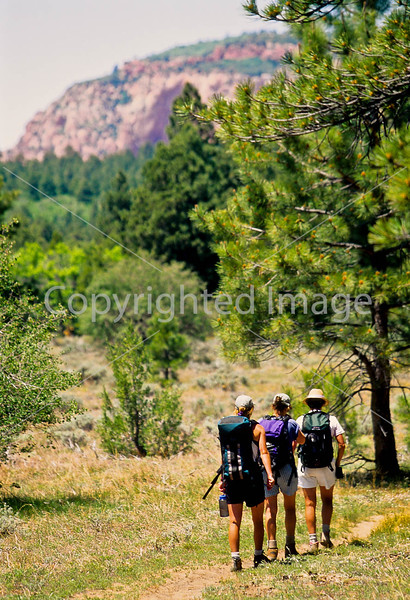 Hikers in Zion National Park, Utah - S11 - 278 - 72 ppi