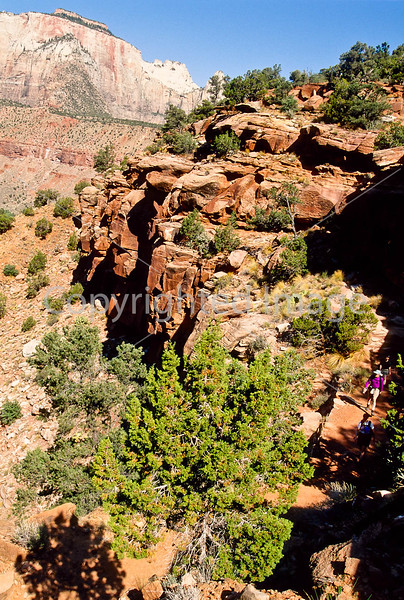 Hikers in Zion National Park, Utah - S11 - 250 - 72 ppi
