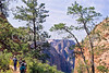 Hikers in Zion National Park, Utah - S11 - 1 - 72 ppi