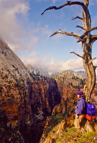 Hikers in Zion National Park, Utah - S11 - 247 - 72 ppi