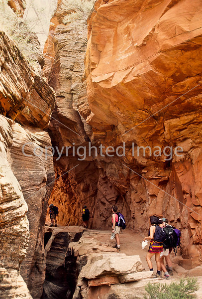 Hikers in Zion National Park, Utah - S11 - 305 - 72 ppi