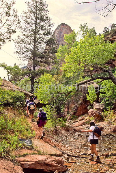 Hikers in Zion National Park, Utah - S11 - 325 - 72 ppi
