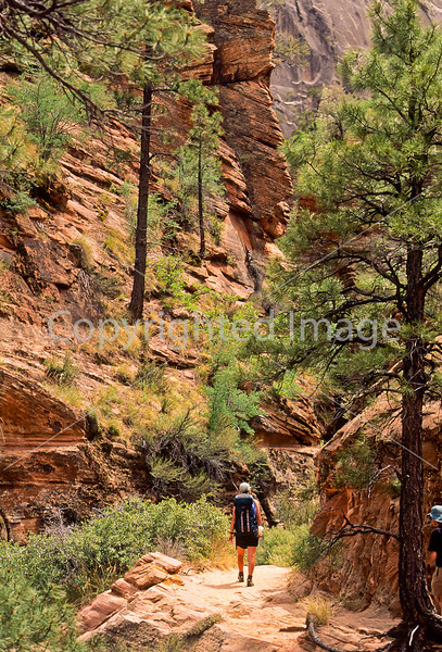 Hikers in Zion National Park, Utah - S11 - 42 - 72 ppi