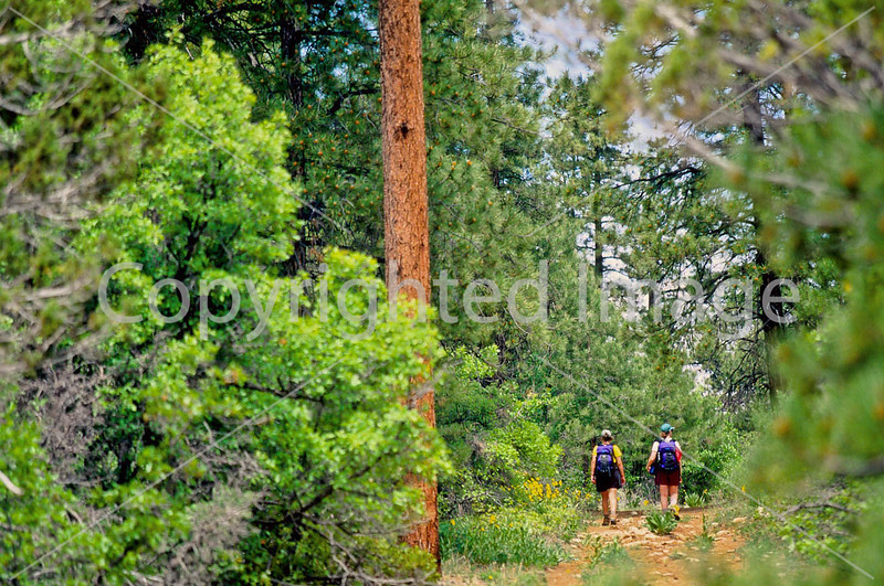Hikers in Zion National Park, Utah - S11 - 244 - 72 ppi