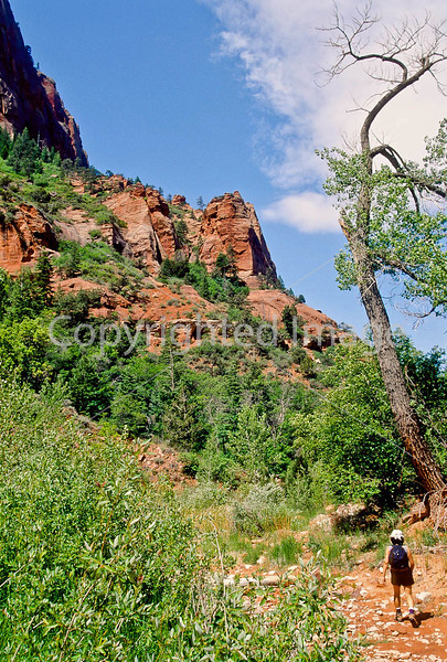 Hikers in Zion National Park, Utah - S11 - 238 - 72 ppi