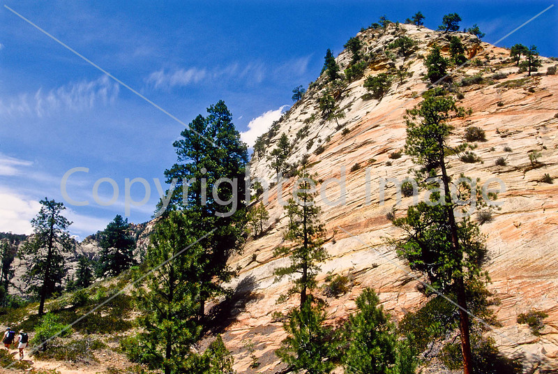 Hikers in Zion National Park, Utah - S11 - 253 - 72 ppi
