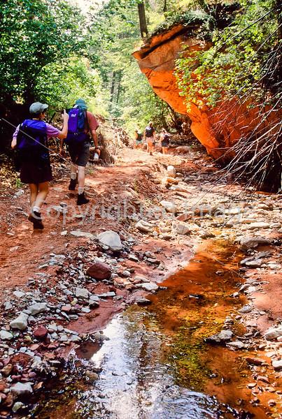 Hikers in Zion National Park, Utah - S11 - 98 - 72 pp