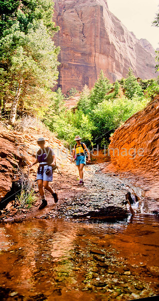 Hikers in Zion National Park, Utah - S11 - 97 - 72 ppi