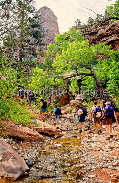 Hikers in Zion National Park, Utah - S11 - 270 - 72 ppi