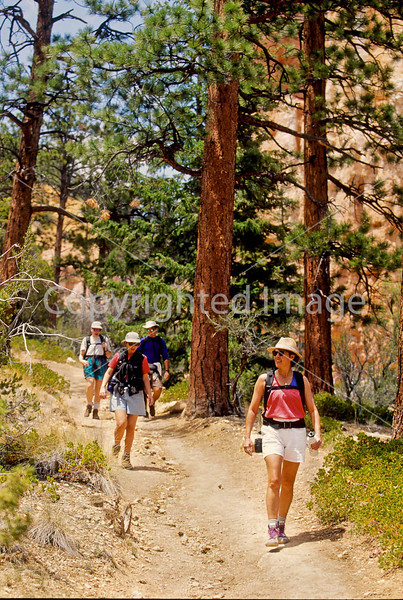 Hikers in Zion National Park, Utah - S11 - 243 - 72 ppi