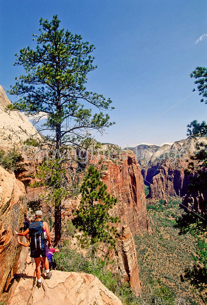 Hikers in Zion National Park, Utah - S11 - 210 - 72 ppi
