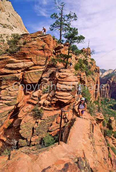 Hikers in Zion National Park, Utah - S11 - 67 - 72 ppi
