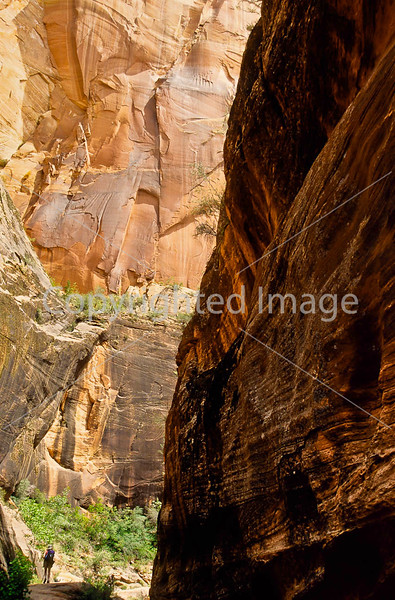 Hikers in Zion National Park, Utah - S11 - 262 - 72 ppi