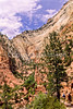 Hikers in Zion National Park, Utah - S11 - 46 - 72 ppi