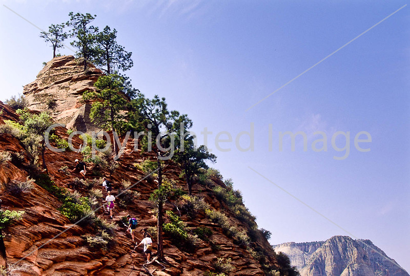 Hikers in Zion National Park, Utah - S11 - 11 - 72 ppi