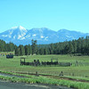 San Francisco Peaks in Flagstaff AZ