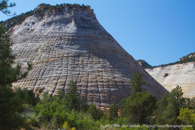 Checkerboard Mesa, Zion National Park, Utah