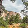 Zion Mesa