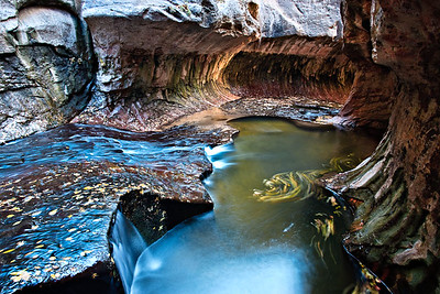 The Subway Left Fork of the Virgin River, Zion