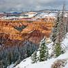 Early Snow, Cedar Breaks