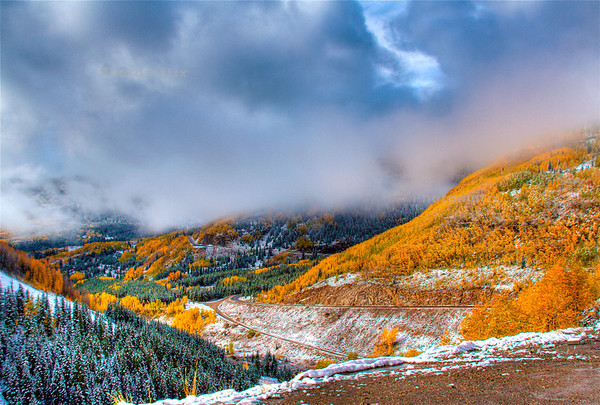Aspen changing between Durango and Silverton, Colorado