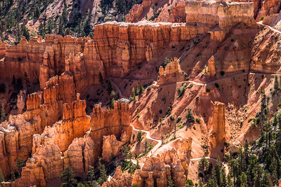 The Cathedral in Bryce Canyon