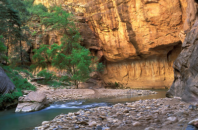 The Virgin River Leaves the Narrows