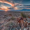 Great Salt Lake Desert Sunset
